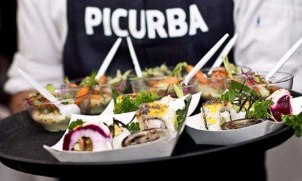 #PICURBA8:el PICNICdel año