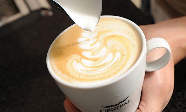 Del café, el mejor…