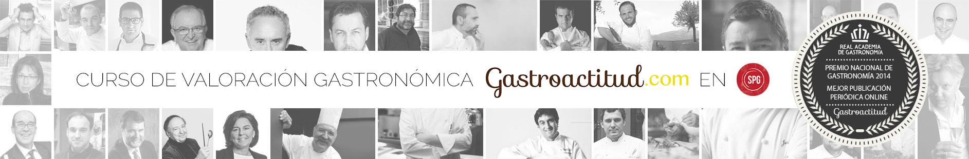 gastroactitud.com
