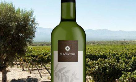 Aceite de Oliva El Porvenir, el primero de Cafayate