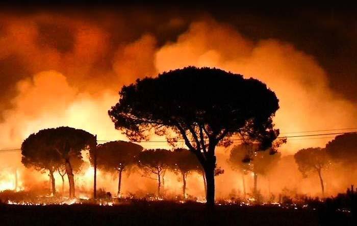 700x420_incendio-moguer-efe