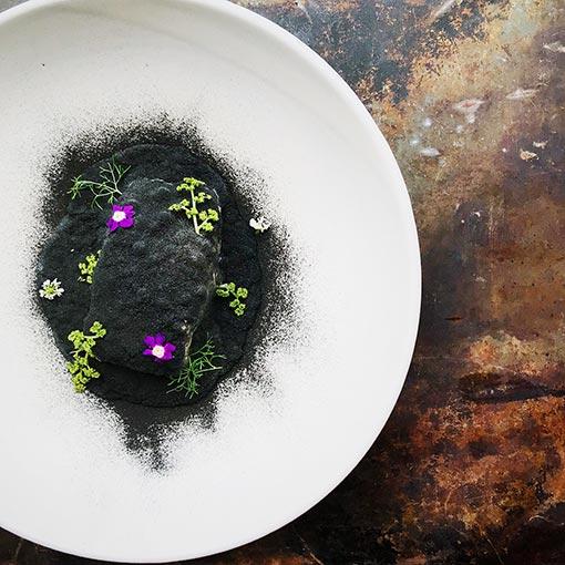 plato-schiaffino