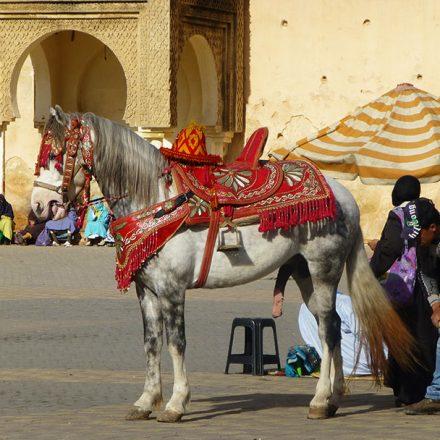 Marruecos de un vistazo