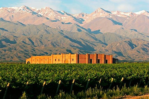 Andeluna: Vinos de Montaña