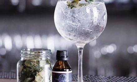 Gin tonic en tres pasos, a domicilio y a toda hora