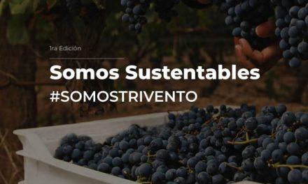 En Trivento somos sustentables