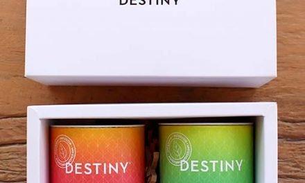 Destiny, tu destino este verano