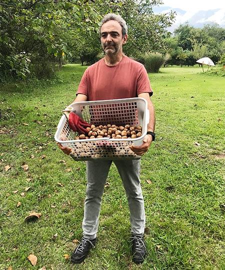 nueces-churrinche-traslasierra