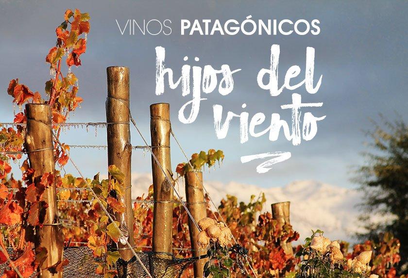Vinos patagónicos: hijos del viento