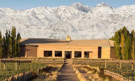 Salentein Reserva renueva su portfolio de vinos elegantes